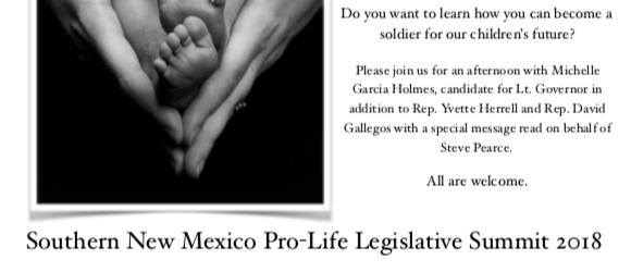 SNM Pro Life Legislative Summit 1